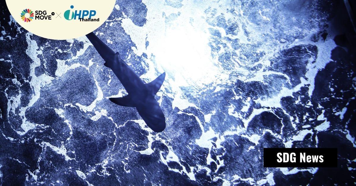 BMW, Volvo, Google, และ Samsung SDI ลงนามกับ WWF ห้ามการทำเหมืองแร่ใต้ทะเลลึก
