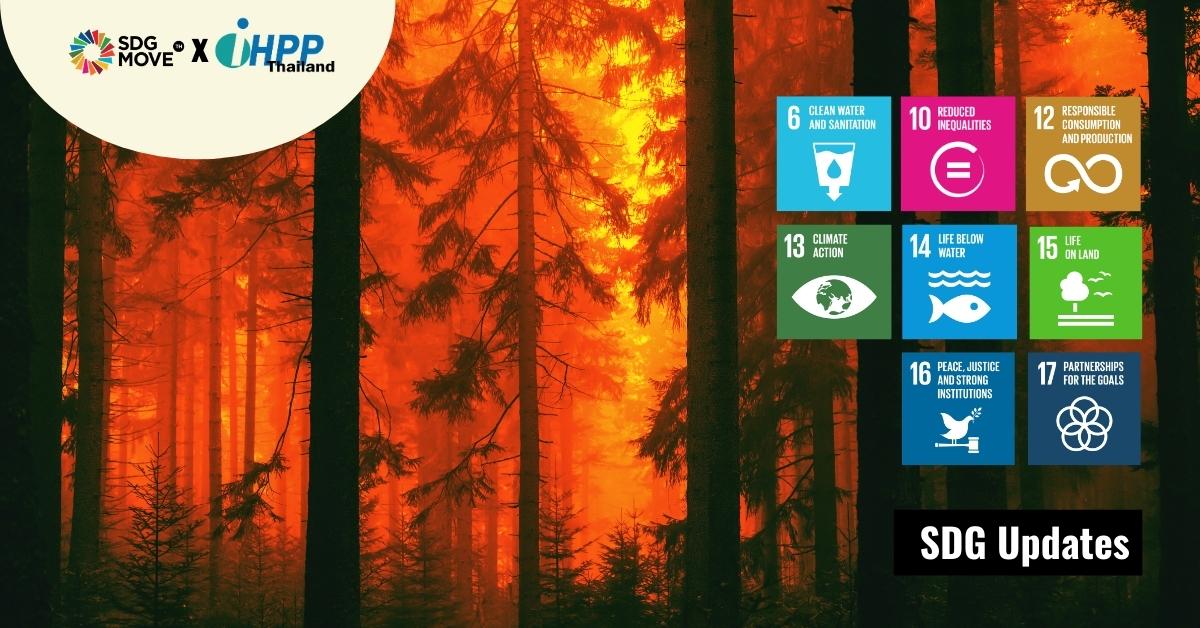 SDG Updates   'Ecocide' อาชญากรรมฆ่าล้างสิ่งแวดล้อมกับการผลักดันให้มีความผิดทางอาญาระดับโลก
