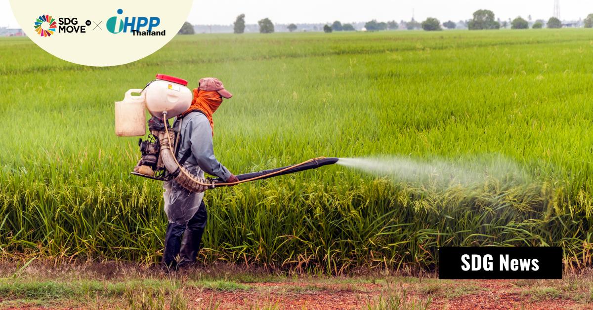 นักวิทยาศาสตร์เรียกร้องให้ WHO เข้มงวดการแบนยาฆ่าแมลงขึ้น เพื่อลดอัตราฆ่าตัวตาย โดยเฉพาะในประเทศที่ทำการเกษตรเป็นหลัก