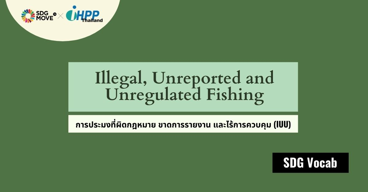 SDG Vocab | 46 – Illegal, Unreported and Unregulated Fishing – การประมงที่ผิดกฎหมาย ขาดการรายงาน และไร้การควบคุม (IUU)