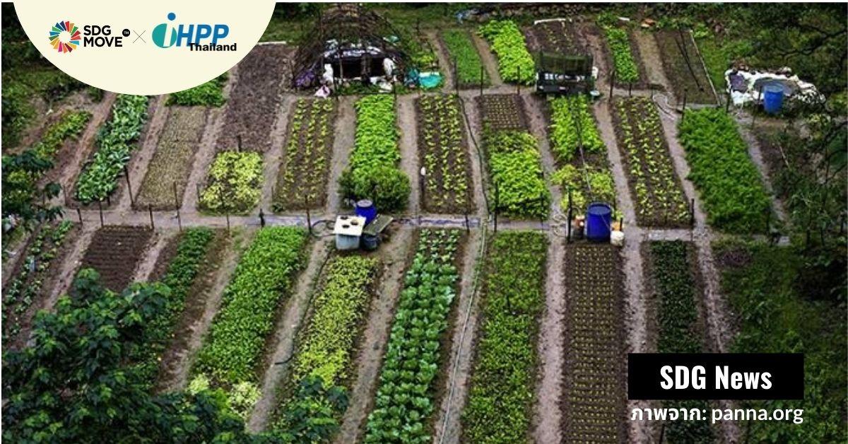 นิเวศเกษตร (Agroecology): การเปลี่ยนแปลงจากฐานรากเพื่อสร้างภูมิต้านทานต่อ climate change และความไม่มั่นคงทางอาหาร