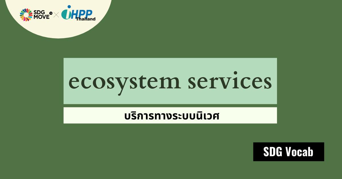 SDG Vocab | 49 – Ecosystem Services – บริการทางระบบนิเวศ