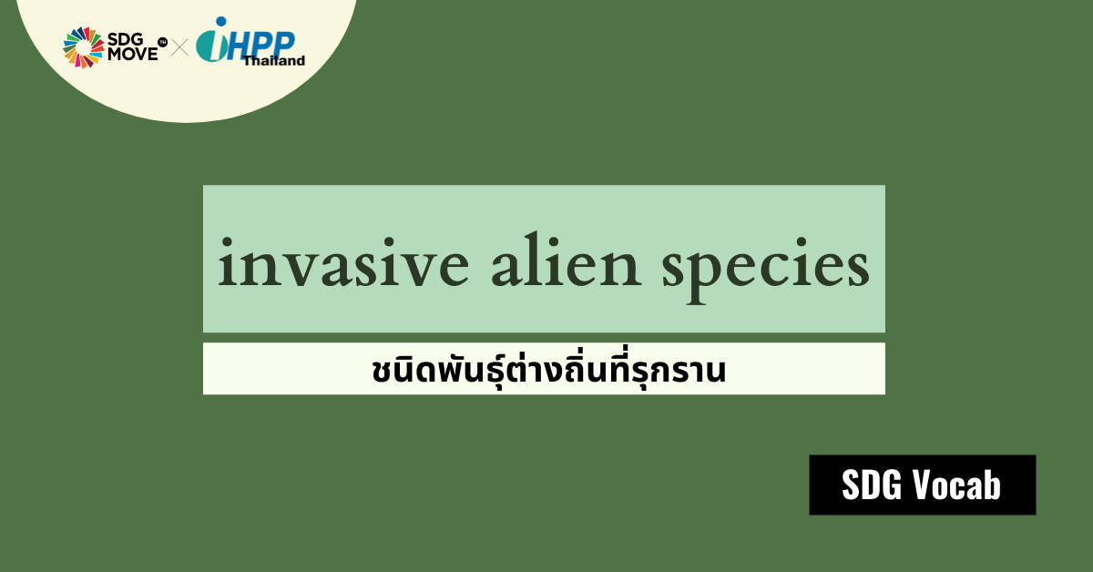 SDG Vocab | 50 –  Invasive Alien Species (IAS) – ชนิดพันธุ์ต่างถิ่นที่รุกราน